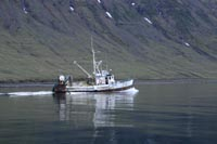 Fishing boat near Súðavík